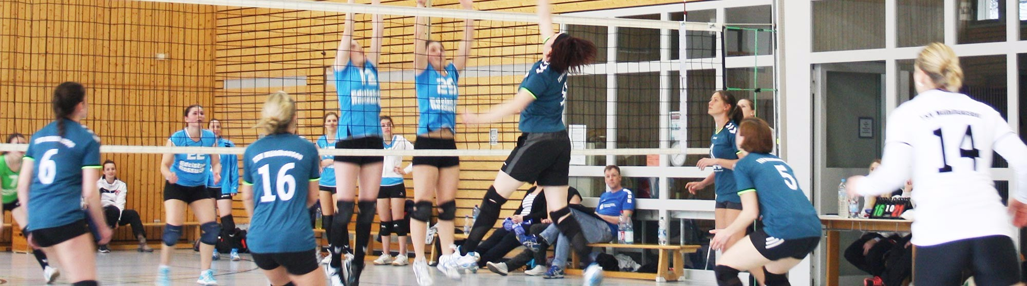 header-abteilung-volleyball